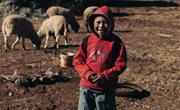 Alex woont hoog in de Andes